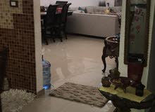 شقة 180 م سابا باشا ( خطوات من الترام )