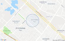 excellent finishing palace for sale in Baghdad city - Zayona