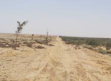 أرض زراعية تربة خصبة بسعر مناسب مساحة 200 فدان