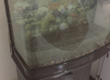 حوض سمك بدولاب للبيع