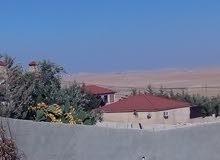 دونمات تنظيم (سكن) ب 15 الف دينار للدونم  في ضواحي عمان القريبة