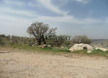 ارض للبيع في الفحيص (بالقرب من دابوق) , مساحة الارض 2000م