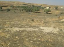 ارض 9762م للبيع في زليتن