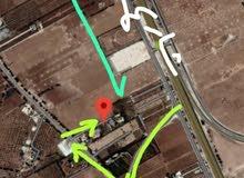 أرض بأم العمد/ 400 مترفقط عن شارع المطار/1دونم و200 /تنظيم ب مع إمكانية التقسيط