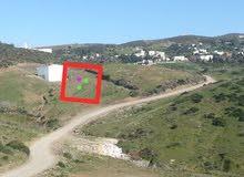 Terrain à vendre 145 mètres, 2 façades Borj melossa  GSM 0670457989