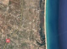ارض للبيع في تونس الحمامات