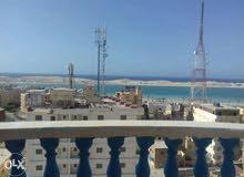 شقه للايجار بمطروح ترى البحر امام شاطىء الفيروز