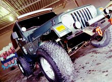 Gasoline Fuel/Power   Jeep Other 2002