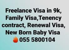 Family Visa,Freelance Visa in 9k      055 5800104