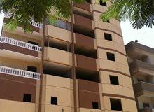 شقة فى عمارة جديدة ع اول شارع زغلول الرئيسي