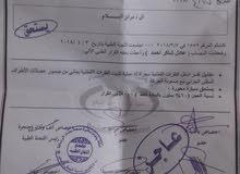 رقم بغداد معوقين واصل الحدود وجبه 44 متكفل في الوكاله