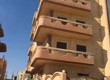 فرصه للسكن بمدينه برج العرب الجديده عماره اربع ادوار