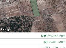 جرش, مزرعة مطلة, 11 دونم