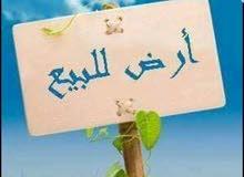 دونم قرار117مفوض بالطابو في كربلاء طريق ياحسين يصلح حسينيه اوسكن عل الشارع مباشر