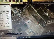 ارض مميزه قرب حدائق الملك عبدالله وجنوب صالة السفير