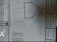 الخلوف مخطط(1) المساحه 1103 متر رقم القطعة 189