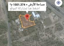 من المالك للبيع ارض زراعيه صحار الشيزاو موقع ممتاز 1563 متر