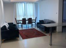 شقة فاخرة وممتازة جدا مقابل فندق شيدي وإطلالة بحرية جميلة