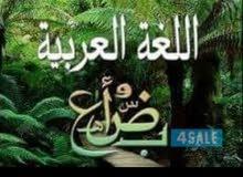 مدرس أول لغة عربية وتربية إسلامية للثانوي والجامعات