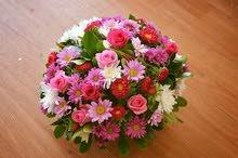 مطلوب منسق/ة زهور و هدايا و بالونات ذو خبرة جيدة