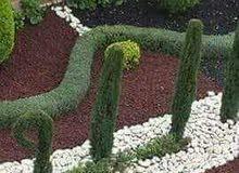 الشرقاوي لتنسيق الحدائق المنزلية والعامة