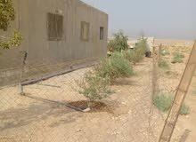بيت شقتين للبيع بالبويضه مساحه البناء 180 متر تقريبا مساحه الارض 500 متر .حي الس