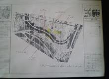 شقة أرضية تنظيم مكاتب/ مركز طبي بواجهتين طويلة منطقة الخالدي الدوار الرابع