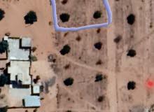 قطعة ارض سكنية في ترهونة دوغة خط السويعدي