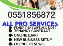 FAMILY VISA SERVICES