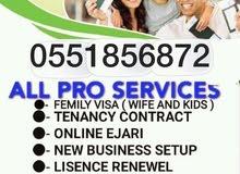 FAMILY VISA SERVICES