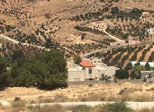 قطعة ارض  بالقرب من شفا بدران ضمن منطقة فلل