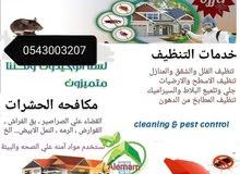 شركة نور الجنة للتنظيف ومكافحة الحشرات