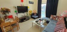 Fully furnitured 1BHK for rent from 1 oct - 31 oct شقة مفروشة بالكامل للايجار شهر اكتوبر فقط