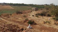 أرض فلاحية ممتازة محفظة للبيع صالحة لجميع أنواع الفلاحة و البناء وكذلك الفريكو