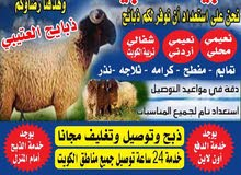 ذبايح للبيع 60777317 مع التوصيل مجانا جميع مناطق الكويت
