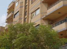 Apartment for sale in Al Riyadh city Al Olaya