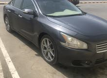 For sale 2010 Grey Maxima