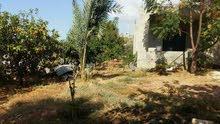 منزل مع ارض قضاء جبيل  - عمشيت جبيل