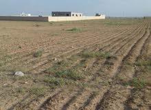 ارض سكنية مفروزة واصل الخدمات .ضاحية الملك عبدالله للبيع