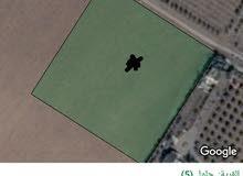 للبيع ارض 10 دونم جلول مميزه جنوب عمان