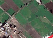 قطعتين ارض للبيع العاجل بكفر الدوار