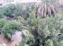 New Apartment of 150 sqm for sale Nasr City
