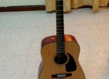 Guitar ( fender) with stand