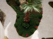 شقه استثمارية 100 متر للبيع في عبدون