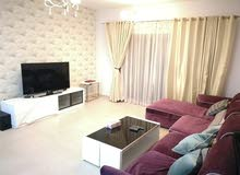 Spacious 1 Bed Room Fully Furnished A[artment in Amwaj Island