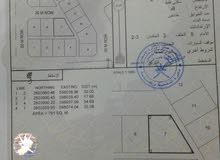 للبيع ارض بولايه نخل منطقه الطو مساحه 791 متر شبه كورنر موقع ممتاز