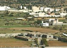 للبيع ارضين متجاوره بصك زراعي مساحتها 9280 مترعلى واجهتين مزفلته وبسعر جديد