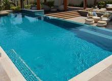 شركة القصرلتنفيذ اعمال احواض السباحة والشلالات والنوافير وتنسيق الحدائق UAE