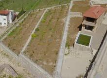مزرعه مع شاليه للبيع في الاردن منطقة جرش