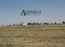 ارض للبيع في منطقة الجيزة المساحة 4 دونم